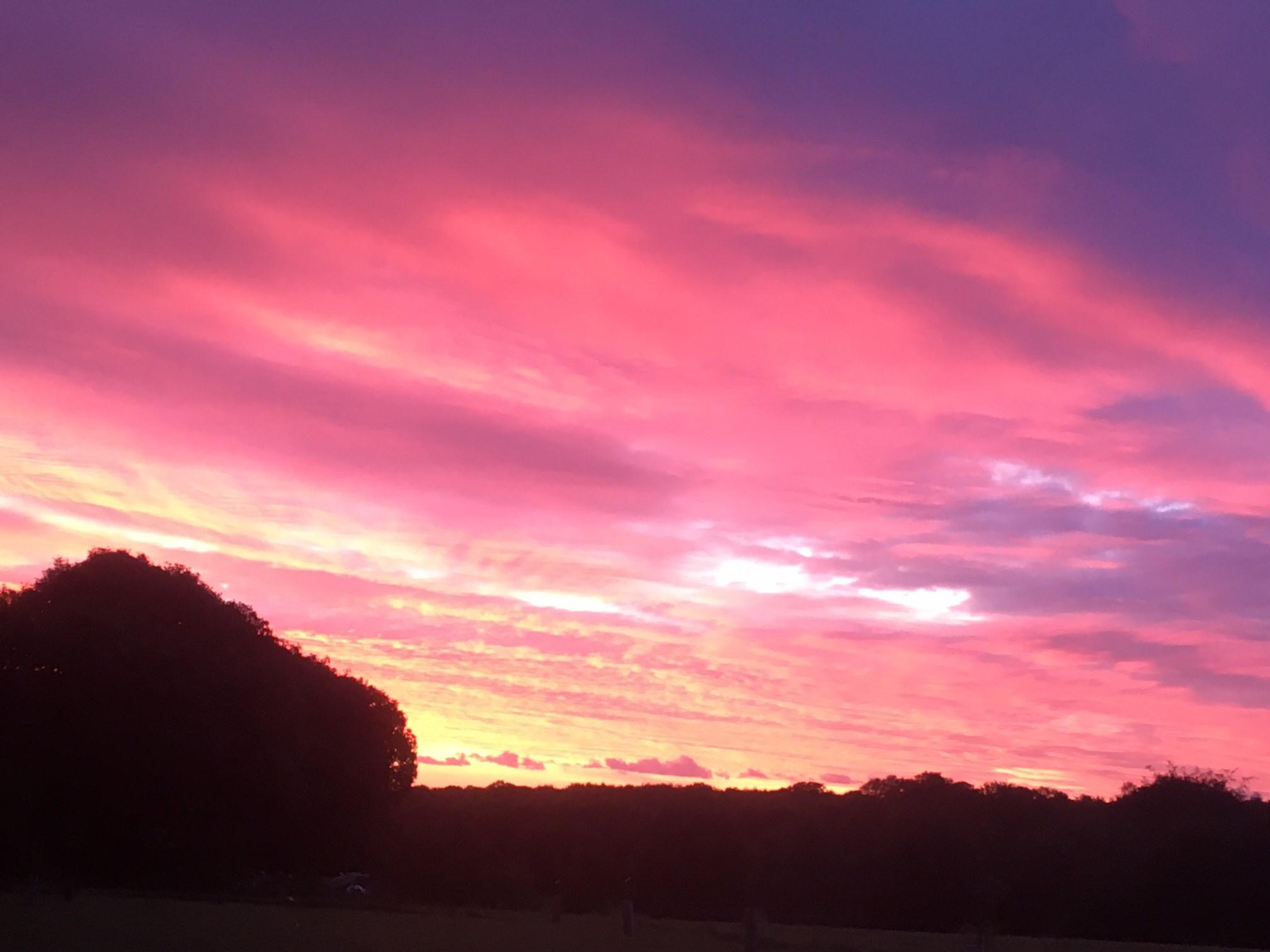 Seriously stunning sunrise this morning 😍